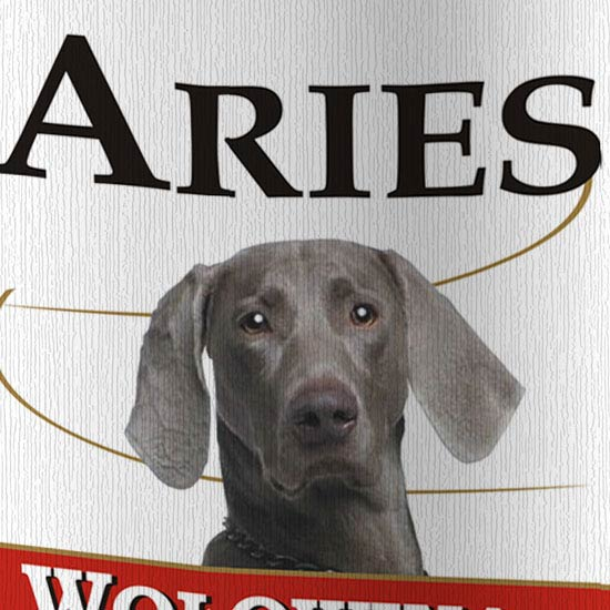 brand project aries